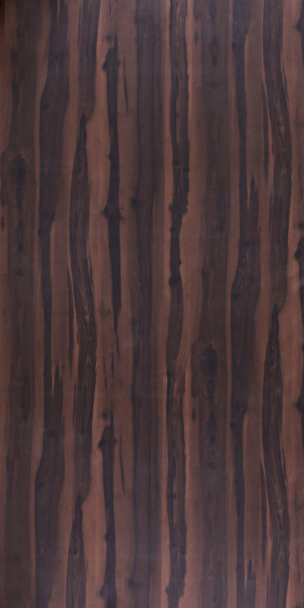 600 SF Two Tone Walnut