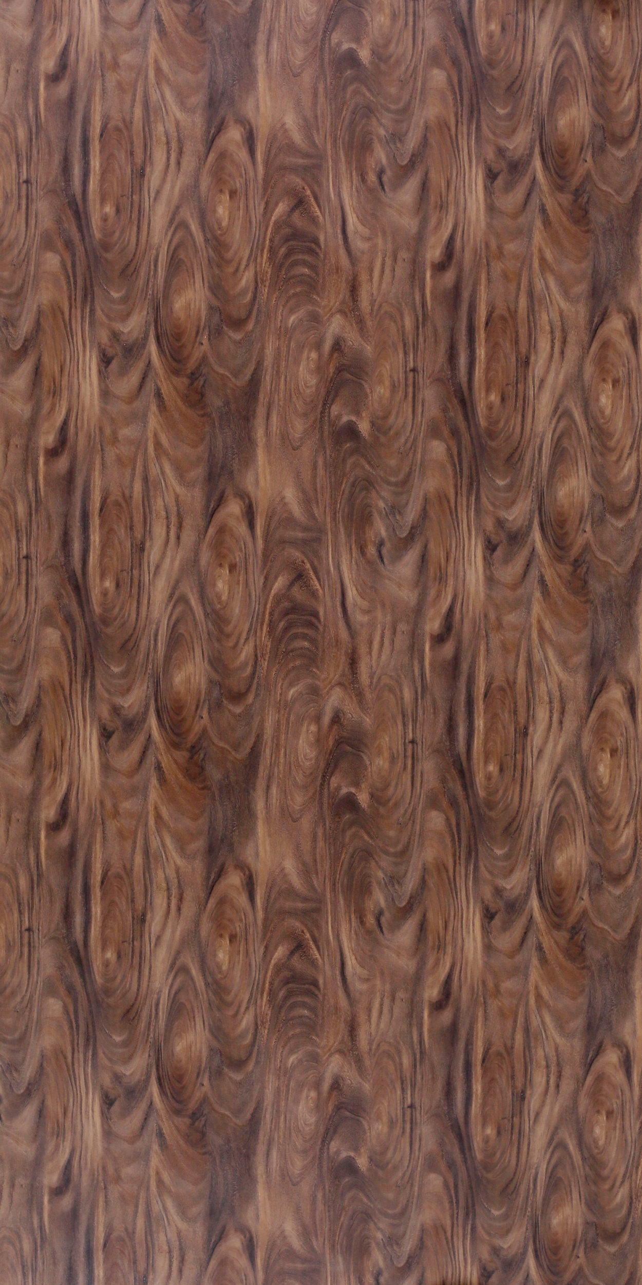 604 SF Flat Cut Walnut